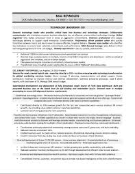 Cio Resumes Free Resume Example And Writing Download
