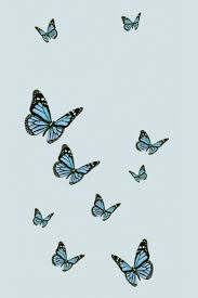 Blue aesthetic ...