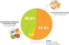 Healthy Eating Percentages Pie Chart The Many Health Risks Of Processed Foods Lhsfna