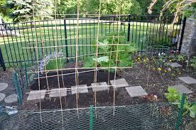 Kitchen Garden Fence Kitchen Garden Seeds Sprouting Dan330