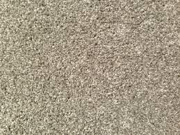 white rug texture. white shag carpet texture safavieh paris off rug \u0026 reviews | wayfairu39