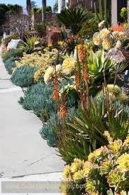 Small Picture succulent garden Garden design ideas Pinterest Gardens