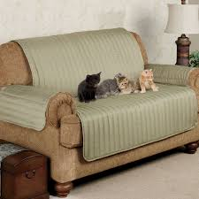 cool couch cover ideas. Twill Loveseat Pet Furniture Cover Cool Couch Ideas