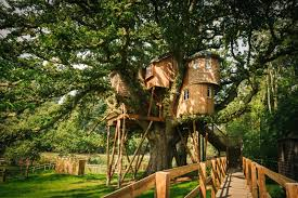 luxurious tree house hotel. Tree Housea Luxury House Fox And Hounds Hotel | North Devon Weddings Luxurious