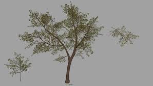 Creating Natural Landscapes for Games | Landscape, Nature, Game art