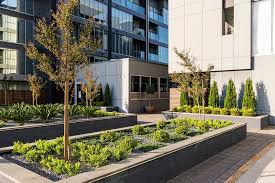 Small Picture Commercial Garden Design Services Adelaide