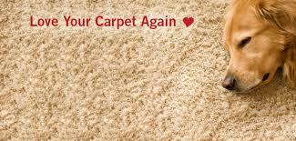 dan s carpet cleaning banner