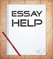why do we provide the best essay help online essay help on time delivery