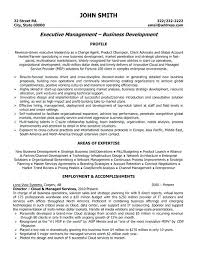 Sample Senior Executive Resume Senior Management Resume Samples Best