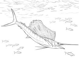 Small Picture Fish coloring pages Free Coloring Pages