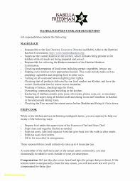 Hair Stylist Resume Template Word Lovely 28 Resume Formats Microsoft