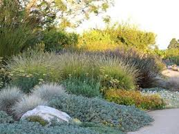 Small Picture 282 best Dry drought garden images on Pinterest Dry garden