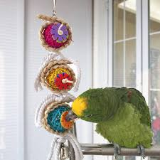 hanging bird cage rope bell toy