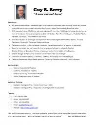 agent estate real resume sample realtor resume example