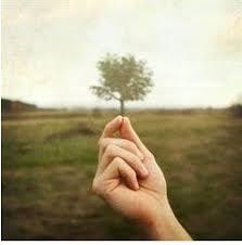 Kingdom of Heaven: Mustard Seed Faith — Secret Seed Words #7