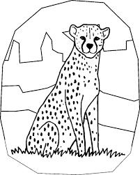 Coloriages Guepard Les Animaux