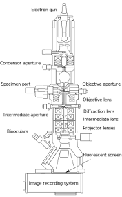 Tem Microscope Transmission Electron Microscopy Wikipedia
