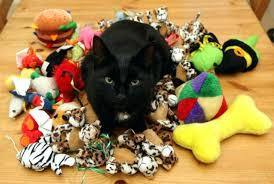 cat play rug cats playing toys 2 cat puzzle play rug