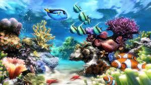 Aquarium as your Desktop Background ...