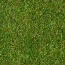 seamless grass texture game. 1024 X Png Seamless Grass Texture Game