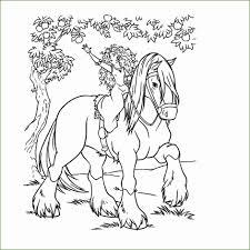7 Paarden Kleurplaten Kayra Examples