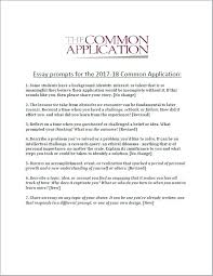 Common Application Example Essays Common App College Essay Examples