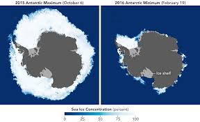 antarctic ice sheet growing sea ice feature articles