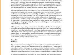 Job Application Essay Example Barca Fontanacountryinn Com