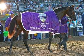 Breeders Cup Charts 2013 Eurton Thinking Kentucky Derby For Breeders Cup Juvenile