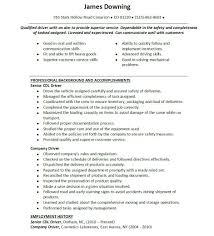 Resume Drivers Sales Driver Lewesmr