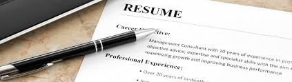 Professional Resume Writing Software   Free Resume Example And
