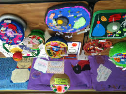 animal and plant cells for 6th grade. Contemporary 6th Cell Projects 3 On Animal And Plant Cells For 6th Grade