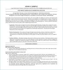 Resume Template For Senior Management | Resume Example