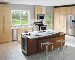 Kitchen Design Programs Furniture Kitchen Cabinets Elegant Kitchen Design Ideas Of