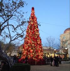 victoria gardens rancho cucamonga california beautiful tree