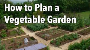 Planning A Kitchen Garden How To Plan A Vegetable Garden Design Your Best Garden Layout