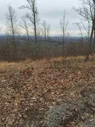 Fire Towers For Sale Lot 14 Fire Tower Lane Decatur Tn 37322 20161220 For Sale