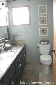 Endearing Concept Bathroom Makeovers Ideas Diy Bathroom Remodel - Small bathroom makeovers