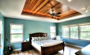 tray ceiling lighting ideas. Ceiling Lighting Options. Drop Bedrooms Design Ideas Tray False For Living Room Basement Z