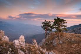 Крымский природный заповедник Википедия