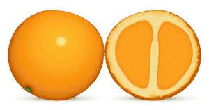 orange clipart png. orange dan setengah clipart png