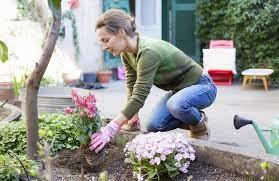 start planting your garden