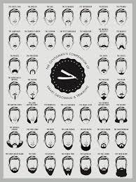 Mustache Styles Chart Beard And Mustache Print Beard Chart Beard Chart Art Print