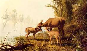 deer in the woods oil on canvas by arthur fitzwilliam tait 1819 1905 united kingdom