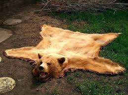 faux bear skin rug marvelous fur cab with head polar