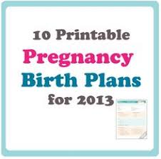 Adoption Birth Plan Template 21 Best Birth Plan Templates Examples Images Birth How To