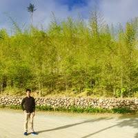 Angel Fields Nature Sunctuary (Now Closed) - Tagaytay, Cavite