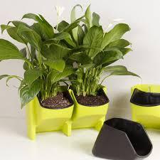 Decorative Planter Boxes Wall Flower Potplastic Vertical Garden Decorative Planterorchid 81