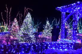 a portion of the light display during the gardens aglow event at coastal maine botanical gardens courtesy photo