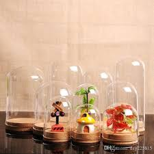x empty clear glass cloche bell jar display case with round cork base for wedding assorted
